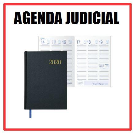 NUEVA VERSIÓN AGENDA JUDICIAL